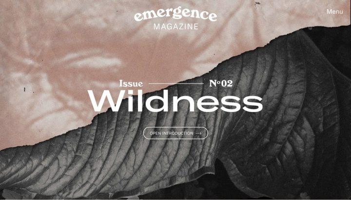 Emergence Magazine, online, issue 2, August 2018