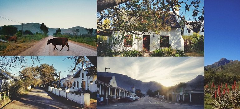 FieldNotes: Greyton collage by Omniology