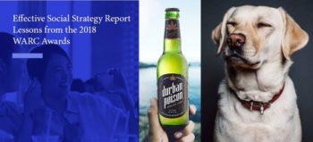 MarkLives Market Research Wrap 4 October 2018