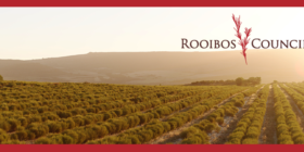 Rooibos Council Facebook cover image