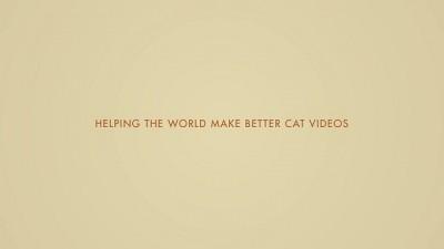Safari Link Helping the World Make Better Cat Videos