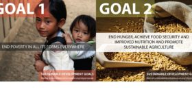 Sustainable Development Goals 1 and 2 slider