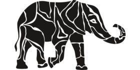 elephant-animal-proboscis-africa courtesy of Pixabay