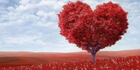 heart-shape-tree-red-outdoors courtesy of Pixabay