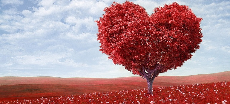 heart-shape-tree-red-outdoors courtesy of Pixabay