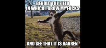 Meme: Behold the field in which I grow my... and see that it is barren