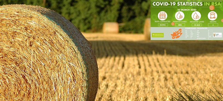 bale-of-straw-summer-hay by Stephanie Bertot-Molion courtesy of Pixabay with NICD covid-19 stats 23 March 2020